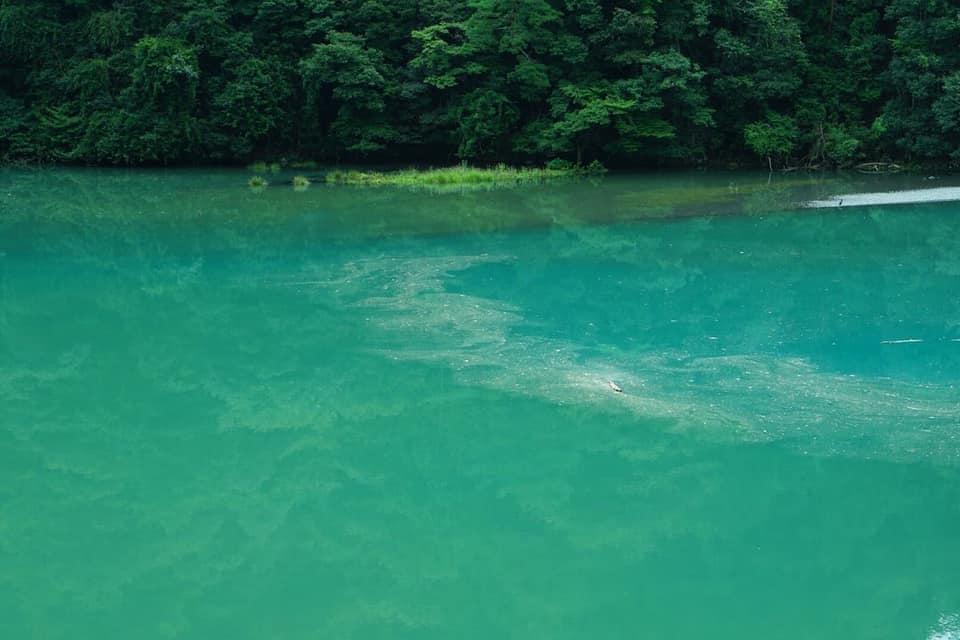 羽衣崎橋からの景色